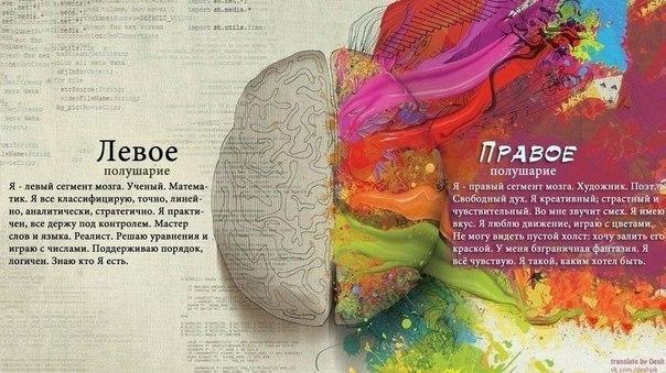 Мастер классы для правого полушария мозга