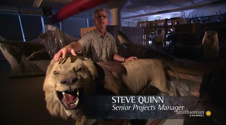 Тайны музеев / Museum Secrets Revealed (2 сезон: 2-8 серии из 8) (2012) HDTVRip