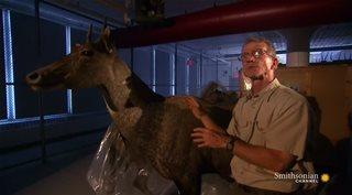 ����� ������ / Museum Secrets Revealed [2 ����� 2-8 ����� �� 8] (2012) HDTVRip