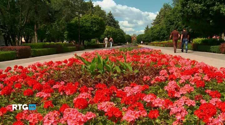 Краснодар — город цветов (2013) HDTVRip