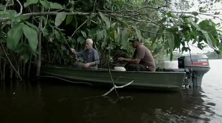 Discovery. ������ ������� / River monsters [6 �����: 1-6 ����� �� 6] (2014/HDTVRip)