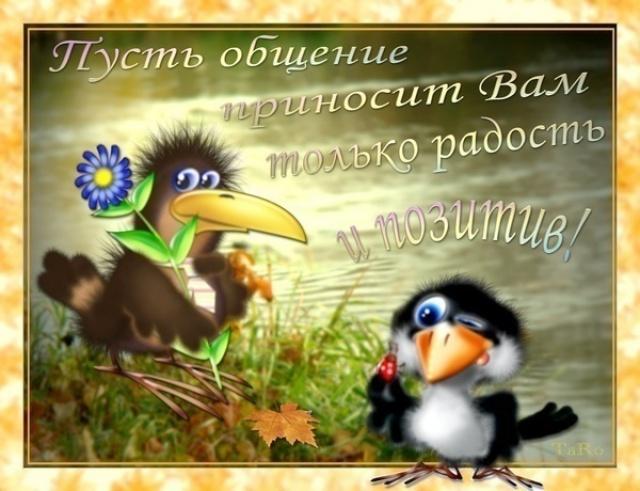 http://s7.hostingkartinok.com/uploads/images/2014/08/cdee30fadedc41d1a6c30c17d5216b31.jpg