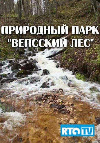 Природный парк Вепсский лес (2013)