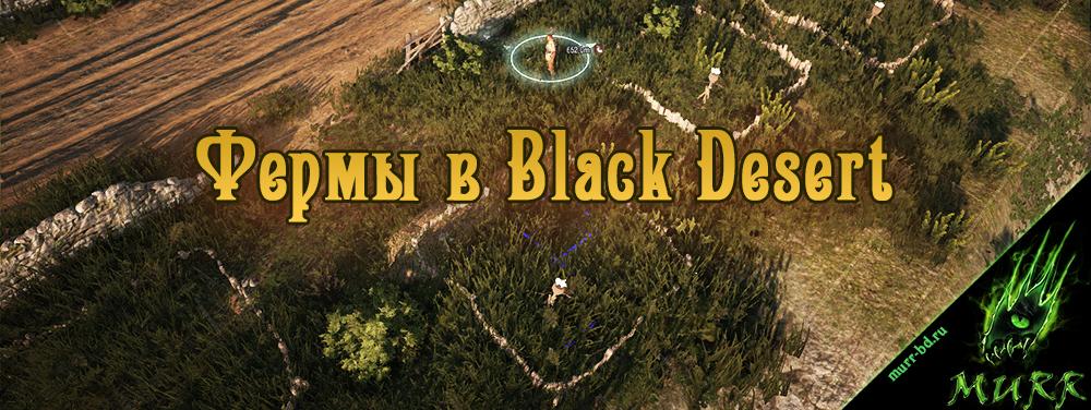 Black Desert Руководство - фото 5