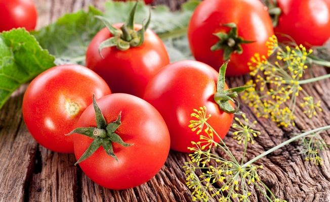 биопрепараты для роста томатов