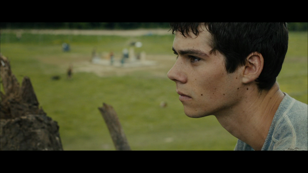 ������� � ��������� / The Maze Runner (2014) DVD9 | ��������