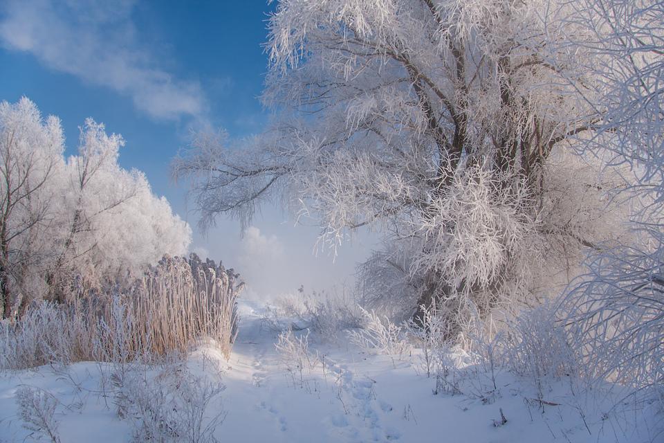 http://s7.hostingkartinok.com/uploads/images/2014/12/4ec85b45ed1345d12232d42aee12efb3.jpg