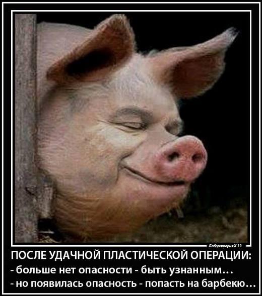 Янукович должен приехать в Киев и рассказать следствию свою версию, - Левочкин - Цензор.НЕТ 6791