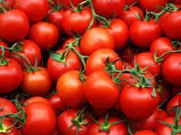 помидоры сорта