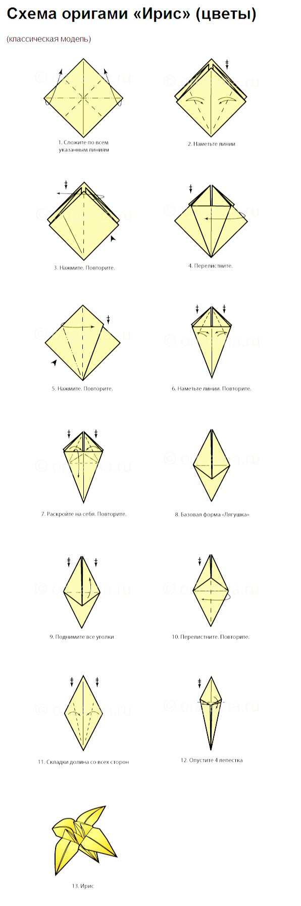 Ирис из бумаги оригами схема