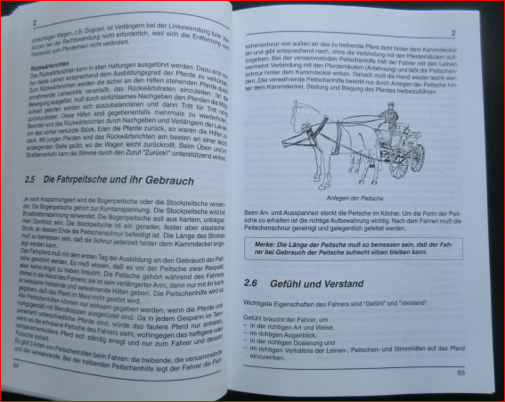 Richtlinien für Reiten und Fahren, Bd.5, Fahren