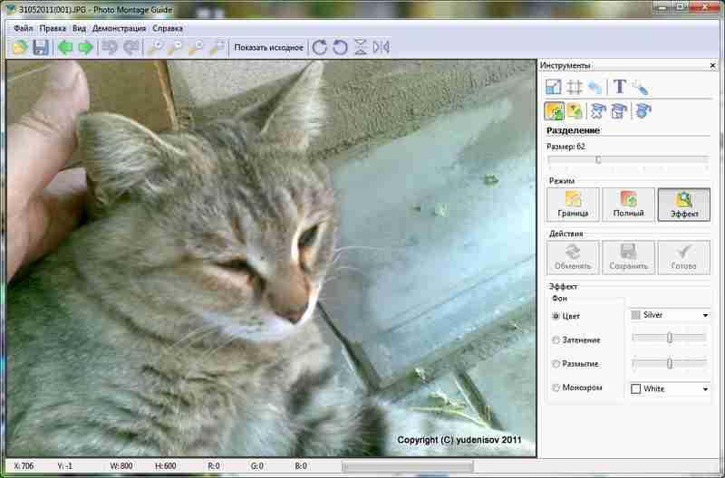 Окно приложения Photo Montage Guid с открытой фотографией