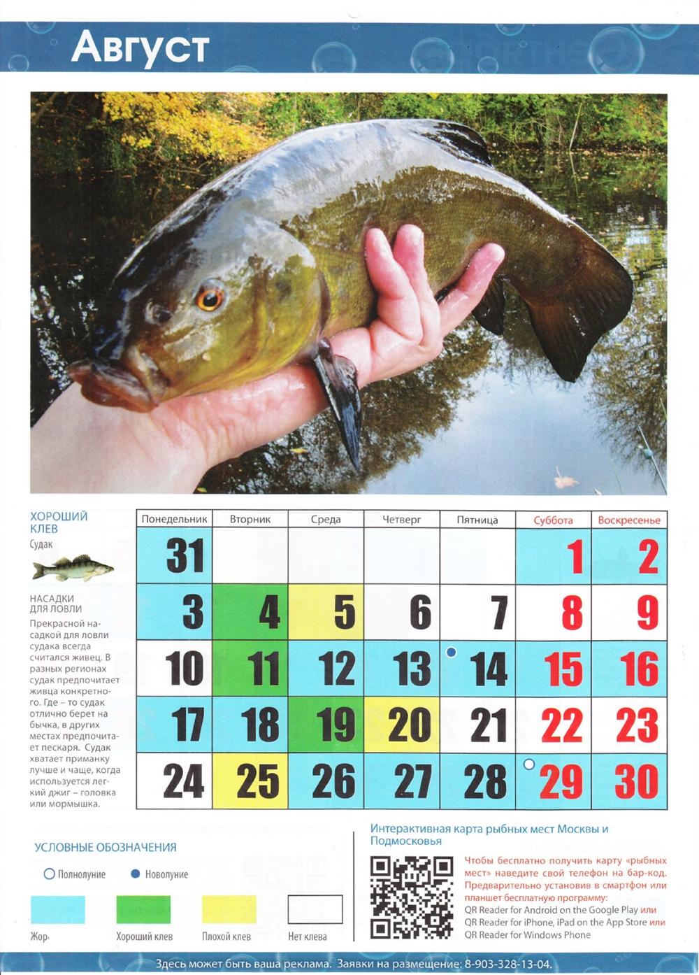 волгодонск рыбалка прогноз клева