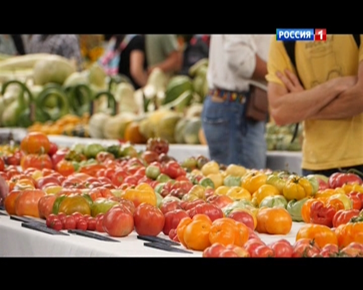 Зерна и плевелы (2015) DVB