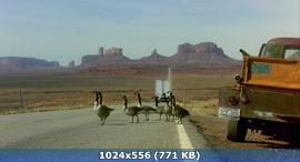 Птицы / Le peuple migrateur (2001) BDRip-AVC | VO