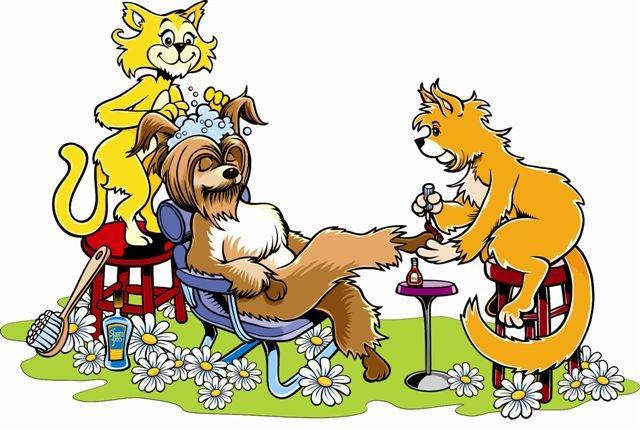 """Интернет магазин товаров для собак """"Волча"""" 1a311a0e0c96edbfa75319e410b84927"""