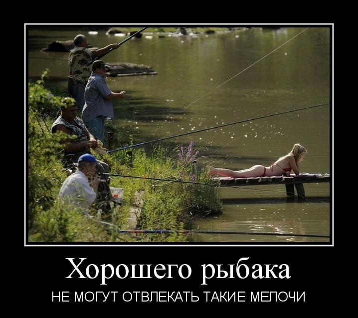 лучше бы ты бухал на рыбалке как все мужики фото