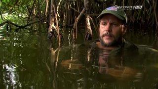 Discovery. Выжить вместе / Выжить вдвоем / Dual Survival [4 сезон] (2014) HDTVRip 720p от GeneralFilm