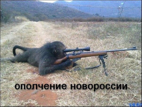 Боевики за день 37 раз обстреляли позиции украинских военнослужащих, активно работают снайперы террористов, - пресс-центр АТО - Цензор.НЕТ 9939
