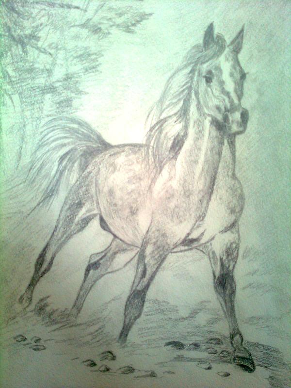 Лошадь...