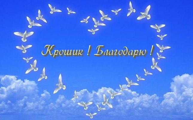 http://s7.hostingkartinok.com/uploads/images/2015/07/042dd02d96f3ba549fde53cc3aca8faf.jpg