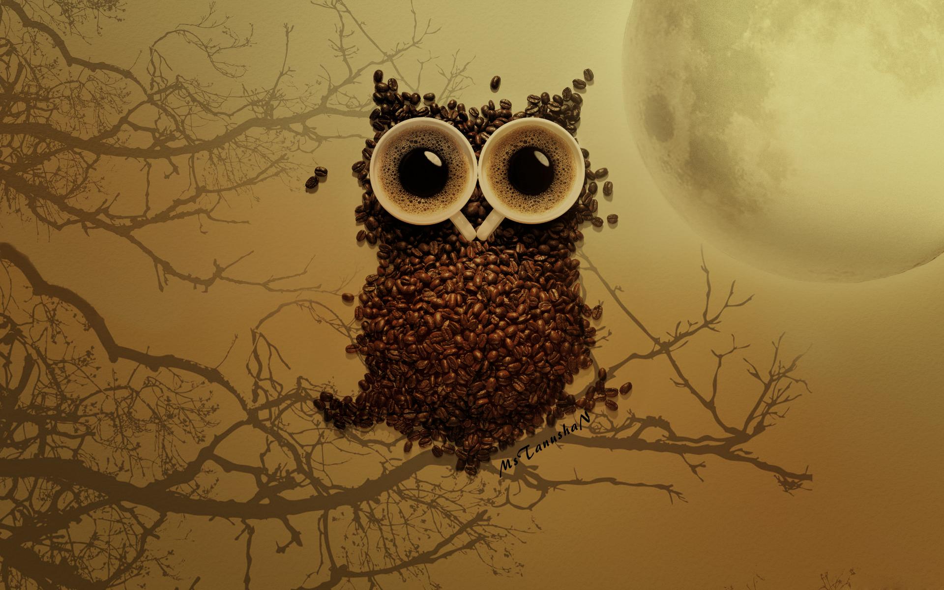 кофе сова еда без смс