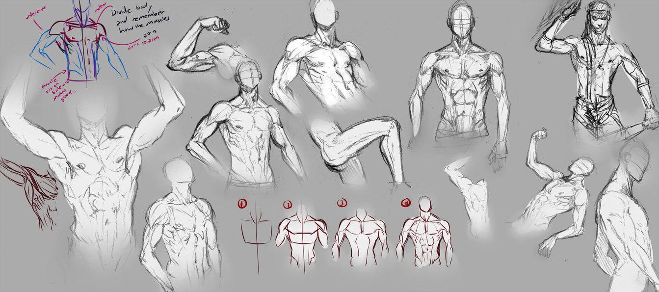 man body drawing - 1200×532