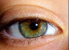 Интересная характеристика  серо голубые глаза значение