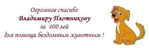 Владимиру Плотникову.jpg