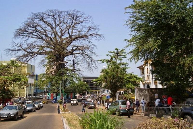 cotton-tree-freetown-4.jpg