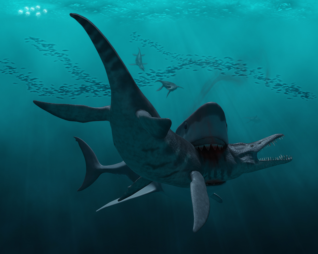megalodon shark pictures - HD 1200×960