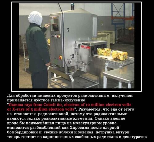 FoodradSafty2_jpg.jpg