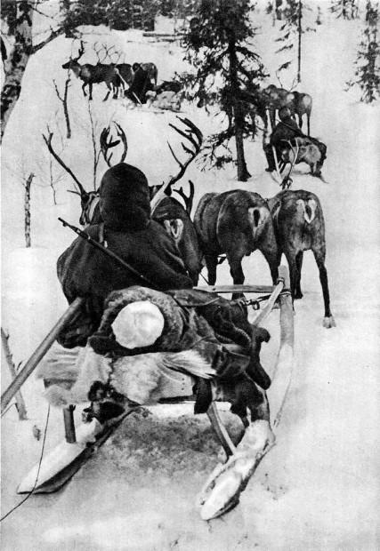 Эвакуация раненых. Ноябрь 1942.jpg