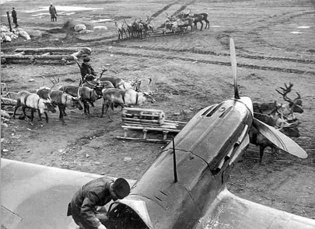 1942-3.jpg