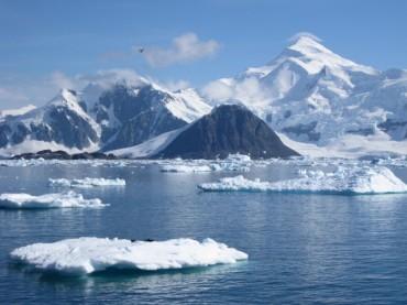 antarctic-650x487.jpg