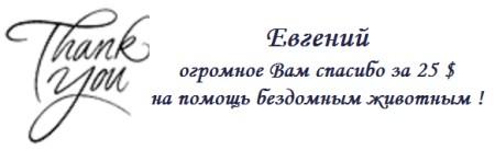 Evgenii-danke.png