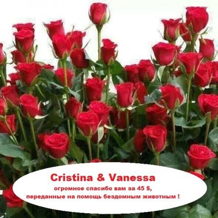 Cristina - Vanessa.jpeg